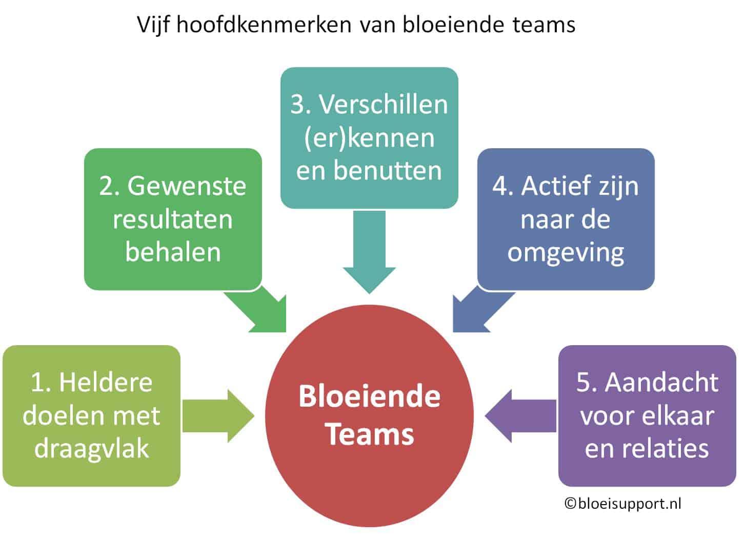 Vijf raandachtspunten voor excellente teams - ©Bloeisupport.nl